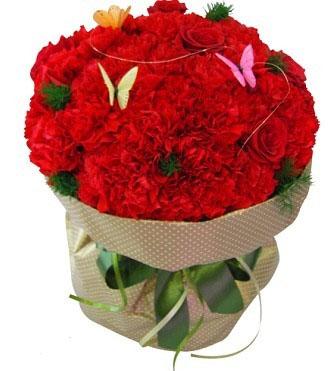 精品粉玫瑰三朵