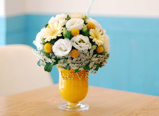 家庭鲜花 小绿植 花瓶