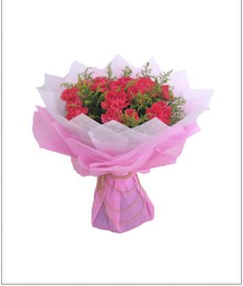 c05圆形花束      各色康乃馨16朵 搭配绿叶 精美包装